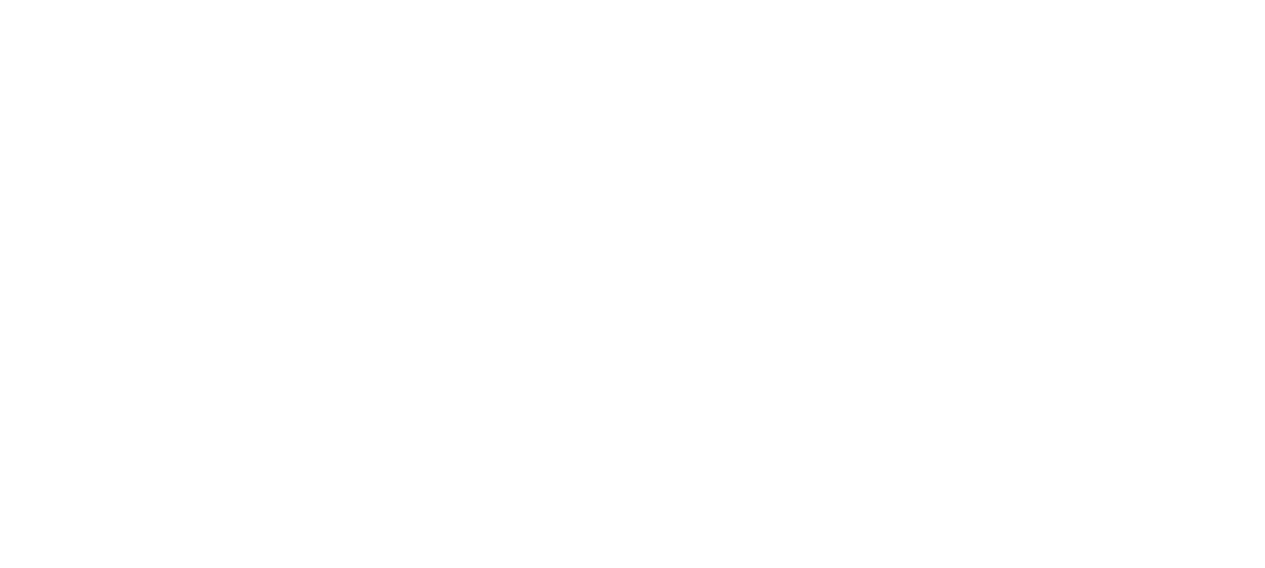 RDS logo white 1